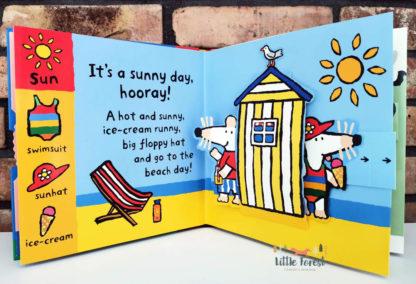 mysia maisy książki dla dzieci po angielsku o pogodzie