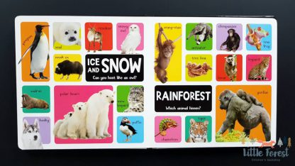 słownik obrazkowy po angielsku o zwierzętach dla dzieci