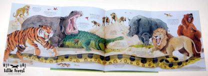 książka o zwierzętach po angielsku