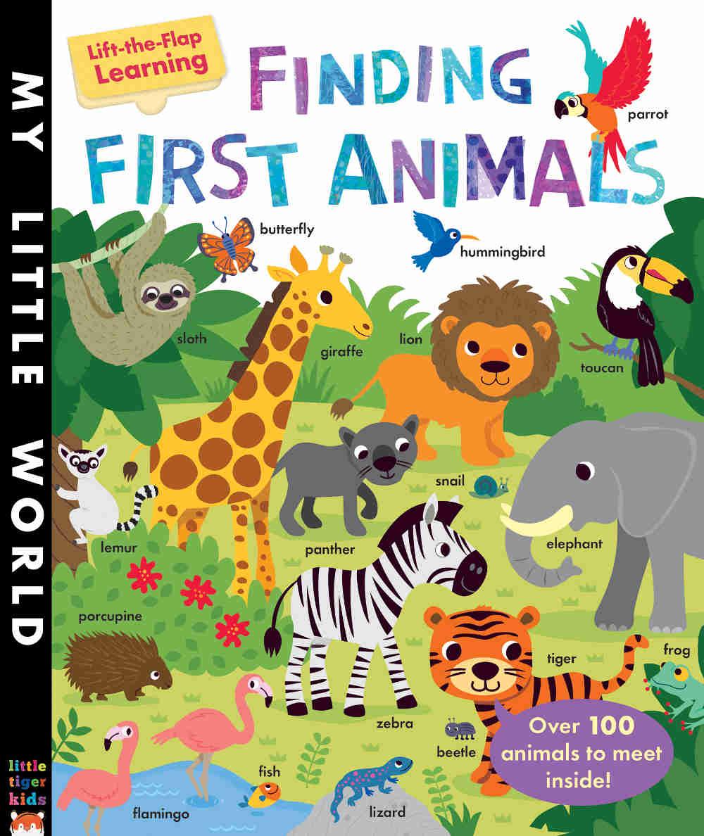 książka z otwieranymi okienkami po angielsku o zwierzętach