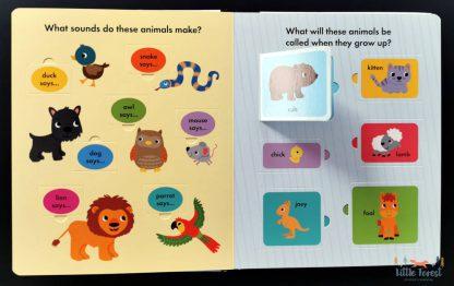 książka dla dzieci po angielsku z okienkami