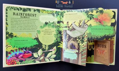 książka edukacyjna o zwierzętach dla dzieci po angielsku