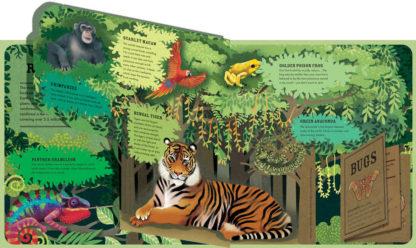książka o zwierzętach po angielsku z otwieranymi okienkami
