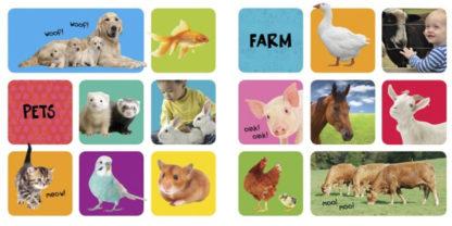książka o zwierzętch dla dzieci po angielsku