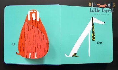 książeczka po angielsku z otwieranymi okienkami dla 3-4 latka