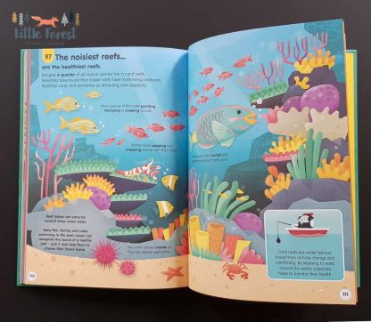książka edukacyjna dla dzieci po angielsku o świecie i wszechświecie