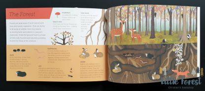 książka o zwierzętach dla dzieci po angielsku