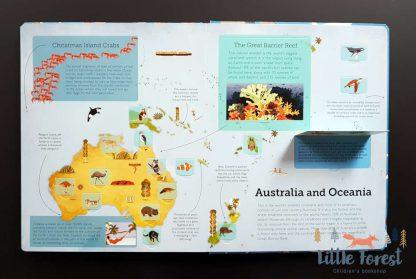 książka edukacyjna dla dzieci o zwierzętach z okienkami po angielsku