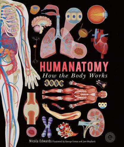 książka o ciele człowieka po angielsku dla dzieci i młodzieży
