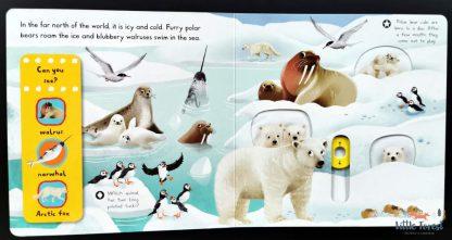 najlepsze książki o zwierzętach dla 2 latka po angielsku