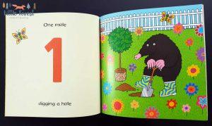 książka dla dzieci do nauki liczenia po angielsku