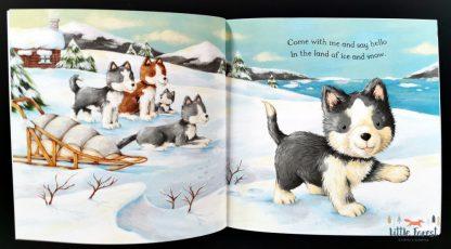 książka dla dzieci po angielsku prezent na boże narodzenie i mikołajki