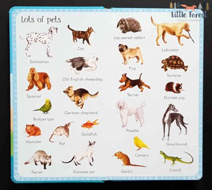 ilustrowany słownik dla dzieci po angielsku o zwierzętach