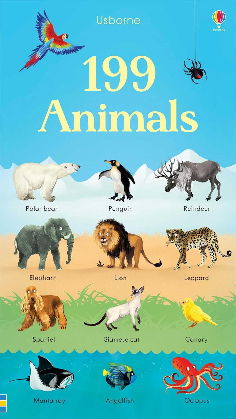 słowniki obrazkowe po angielsku usborne