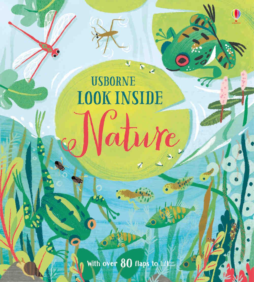książka z okienkami o przyrodzie po angielsku