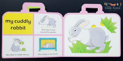 książeczka dla dzieci walizeczka do nauki pierwszych zwierząt po angielsku rod campbell