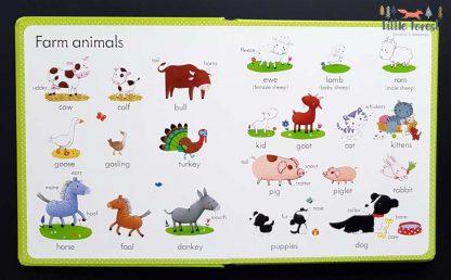 słownik obrazkowy dla dzieci po angielsku na farmie
