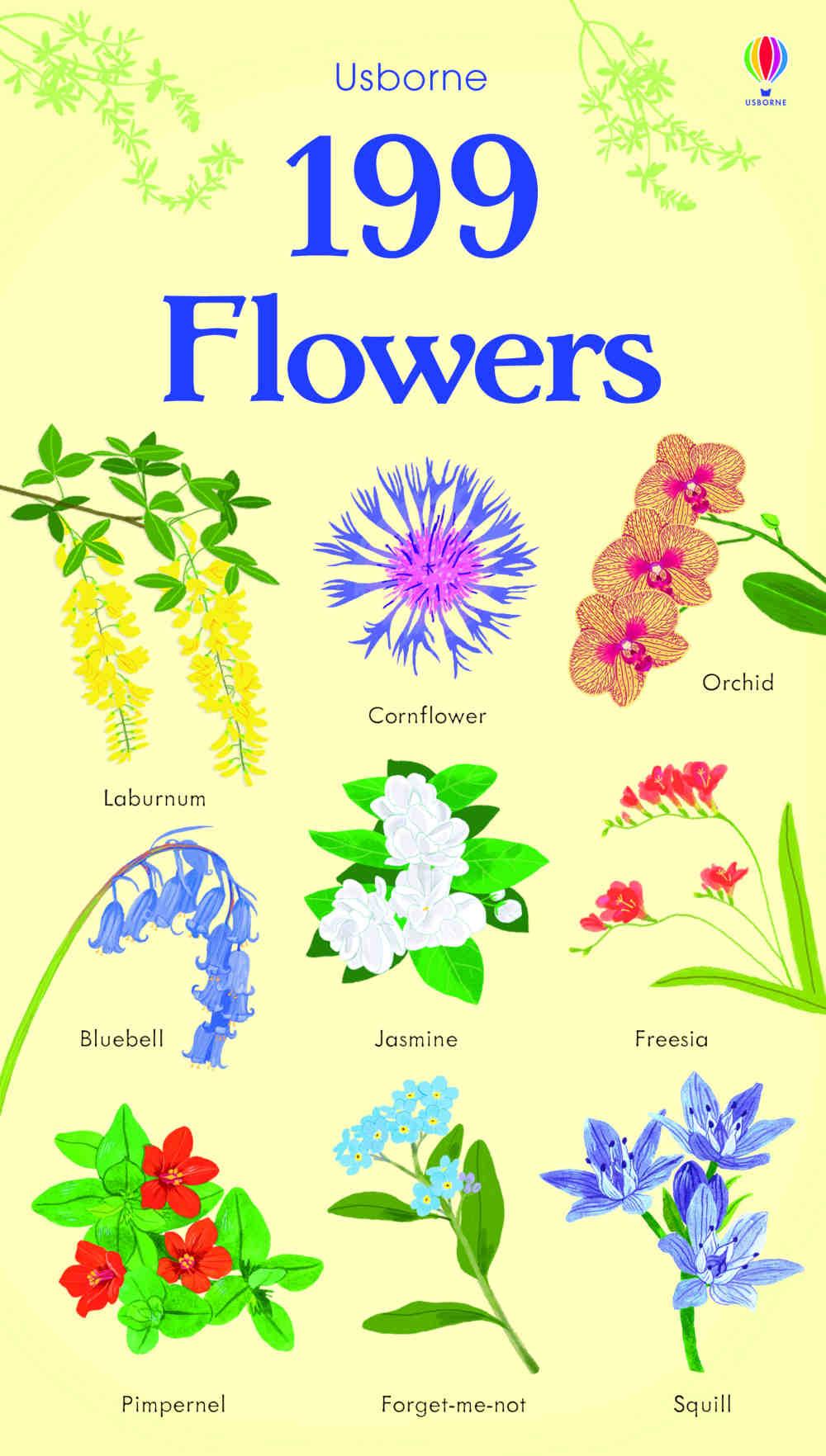 słownik obrazkowy dla dzieci po angielsku kwiaty i rośliny