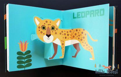 książka 3D dla dzieci o zwierzętach