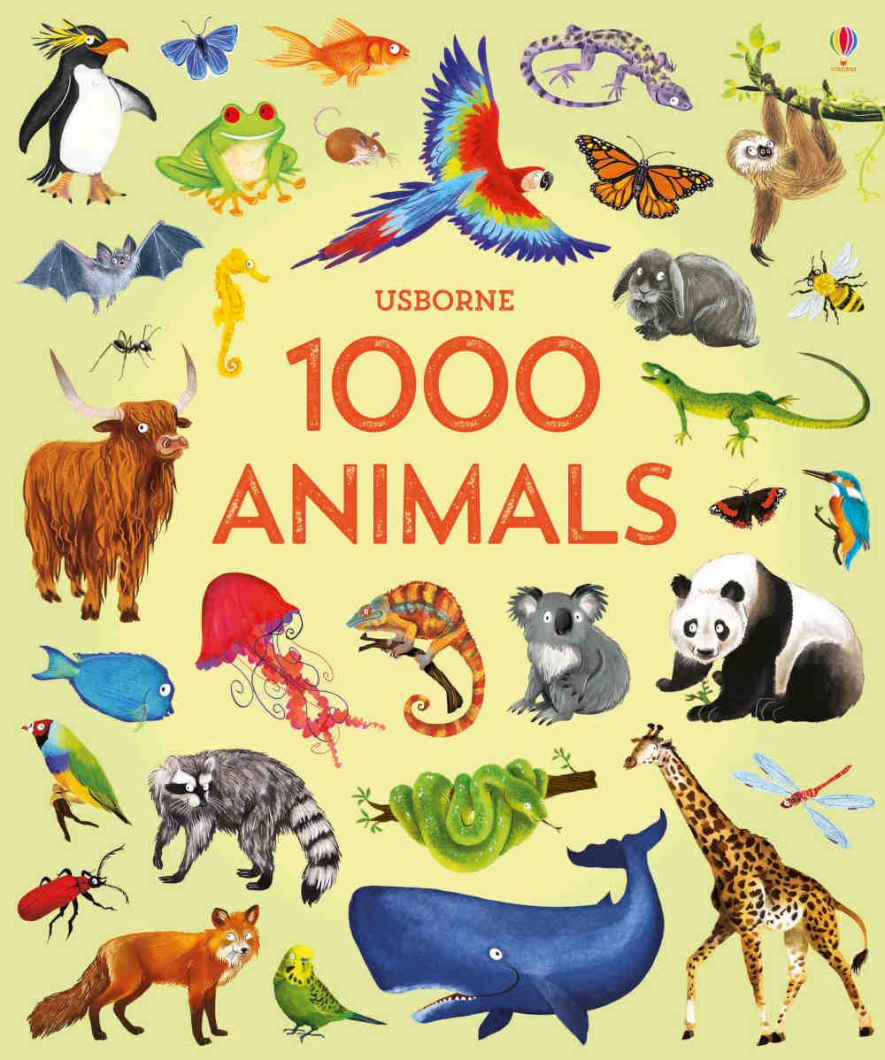 słownik angielski obrazkowy dla dzieci o zwierzętach