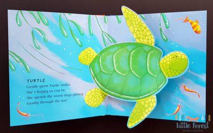 książka 3D trójwymiarowa dla dzieci po angielsku ocean