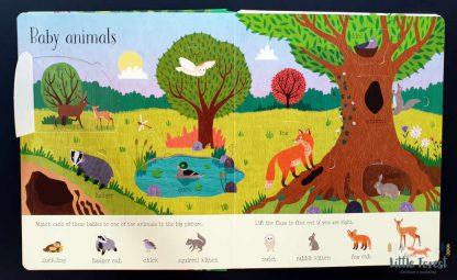książka dla dzieci z okienkami o przyrodzie po angielsku
