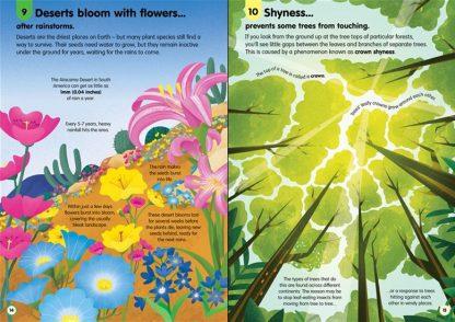 książki usborne dla dzieci po angielsku