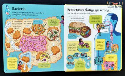 książki dla dzieci anatomia człowieka