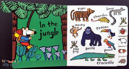 ksiażka o zwierzętach po angielsku dla dwulatka