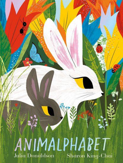 książki do nauki alfabetu po angielsku julia donaldson