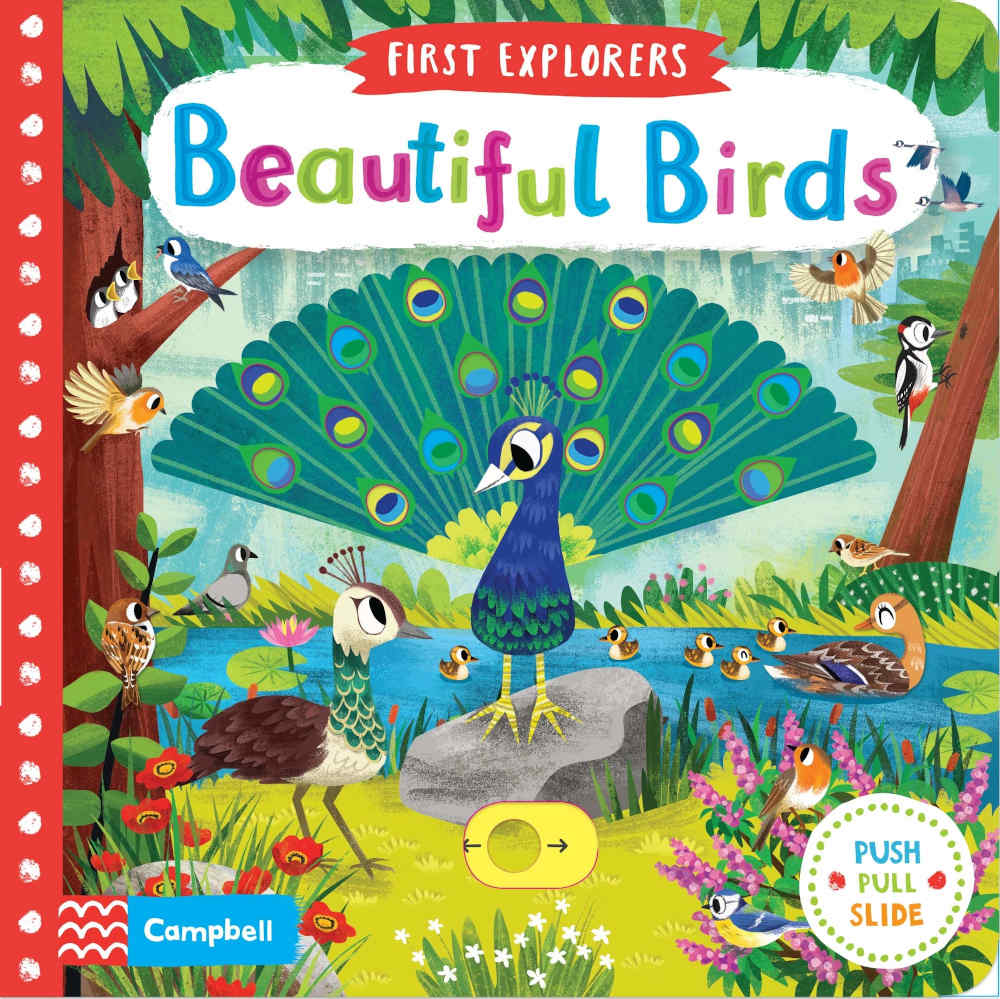 książka edukacyjna dla najmłodszych po angielsku