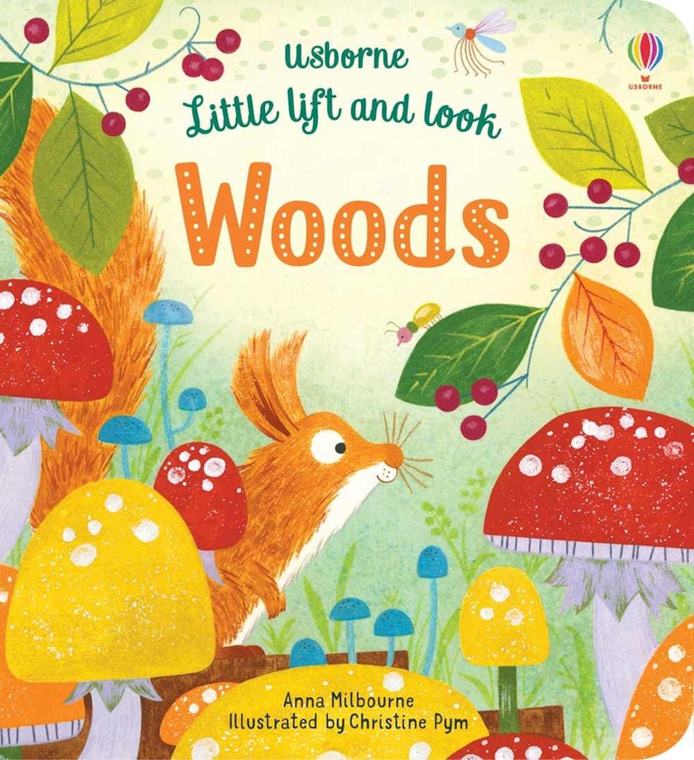 książka po angielsku usborne dla dwulatka i roczniaka