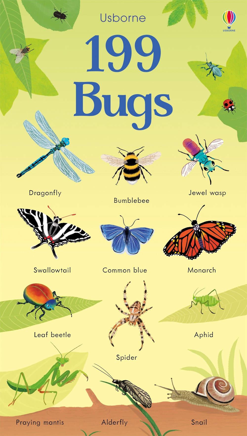 słownik obrazkowy dla dzieci po angielsku owady