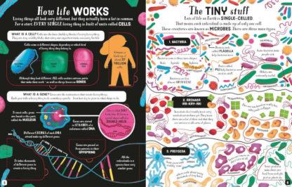 książki dla młodzieży po angielsku biologia usborne