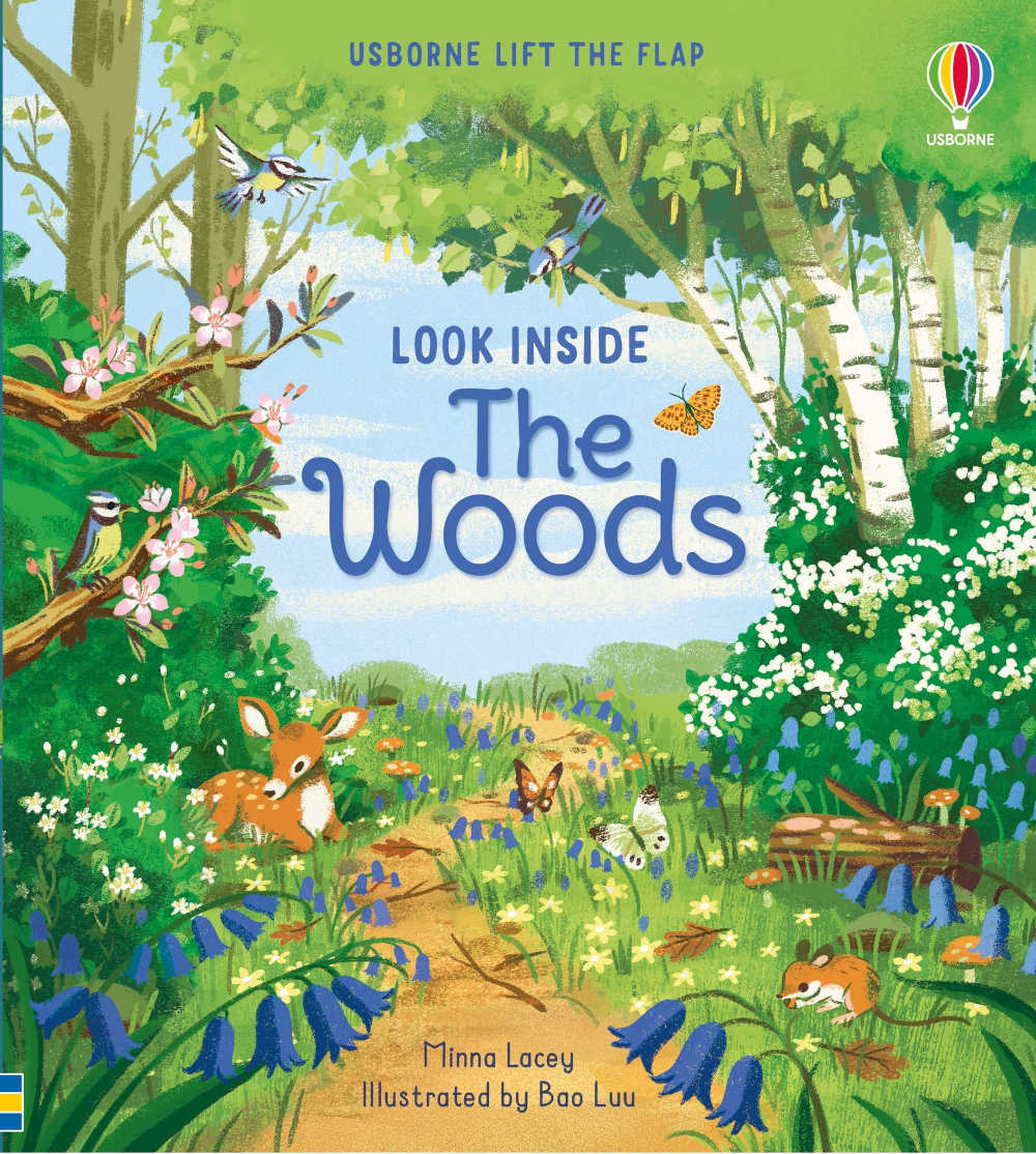 ksiązki dla dzieci po angielsku usborne z okienkami