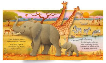 ksiązka 3D trójwymiarowa o zwierzętach